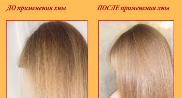 волосы до и после бесцветной хны